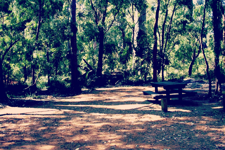Campgrounds with a park bench