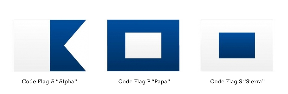 some standard code flags