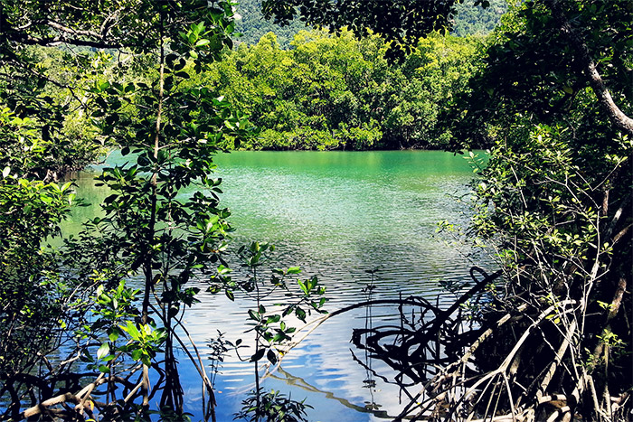 Free Camping QLD - A Guide to Queensland's Best Free Camp