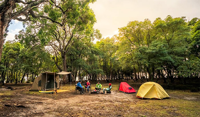 A group of campers sitting around at a free campsite in NSW
