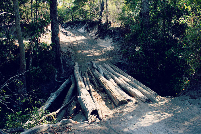 old-telegraph-track bridge made from tree trunks