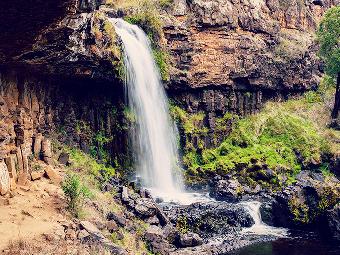 Paddys river waterfall