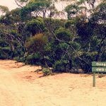 Googs Track – Funny Name, Great 4WD Track